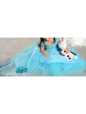 Frozen Vestiti Carnevale Elsa 2-9  anni 789009