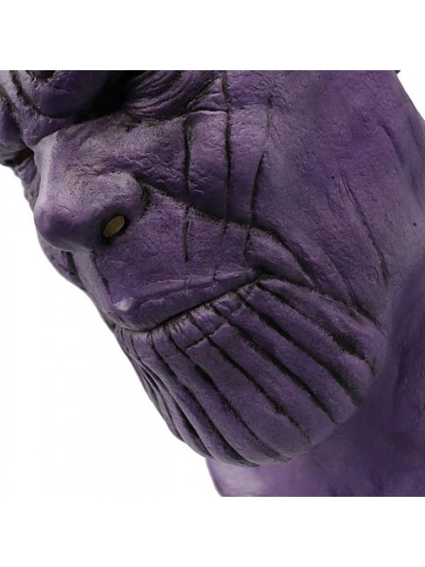 Simile Thanos Costume Carnevale Bambino Uomo THAN01